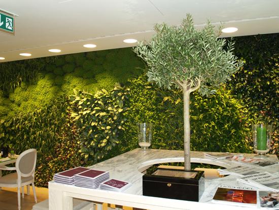 Lounge bar il giardino ascona giardino verticale epigea - Giardino verticale interno ...