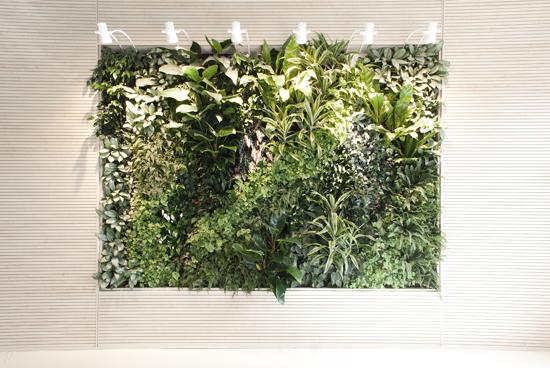 Giardino verticale presso Associazione Portofranco – Milano