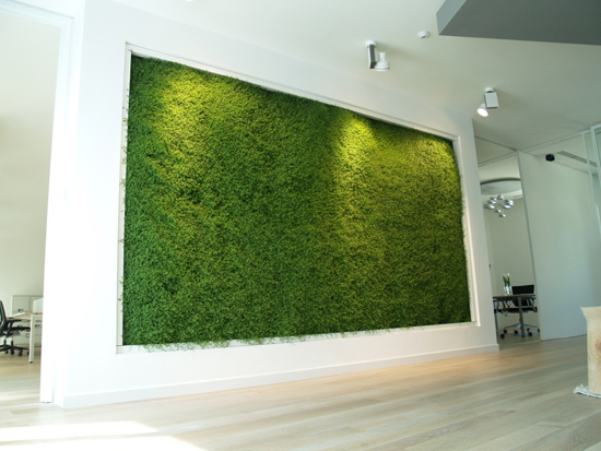 Prisma milano giardino verticale pelle verde epigea - Giardini verticali interni ...