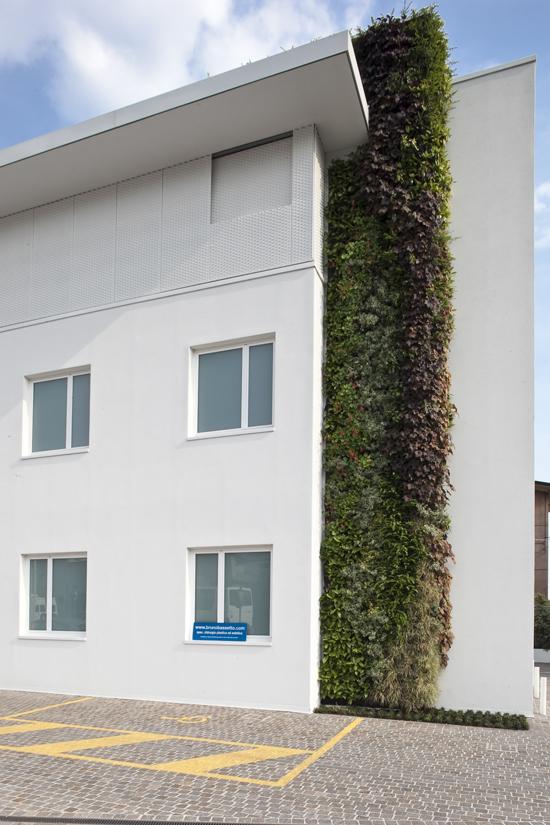 Giardino verticale Centro Salus – Vicenza