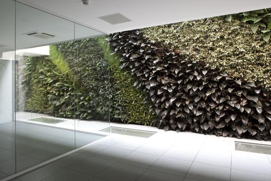 Giardino verticale santoni epigea - Giardino verticale interno ...