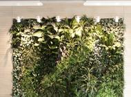 (ITA) Giardino verticale presso Associazione Portofranco – Milano