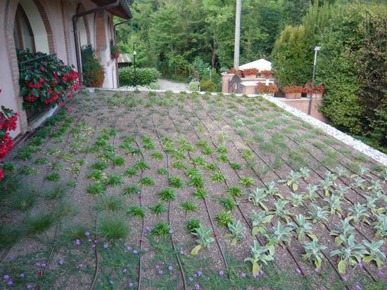 Giardino pensile presso abitazione privata – Arese (MI)
