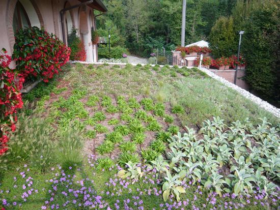 Giardino pensile presso parolo srl epigea for Soluzioni giardini pensili
